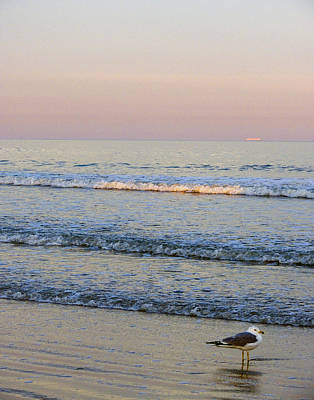 Sunset Atlantic Beach Florida Poster by Ann Tracy