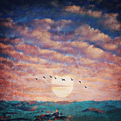 Sunset Birds V1 Poster
