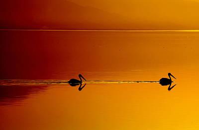 Sunset Cruising Poster