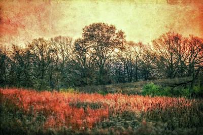 Sunset In Orange At Retzer Nature Center Poster by Jennifer Rondinelli Reilly - Fine Art Photography