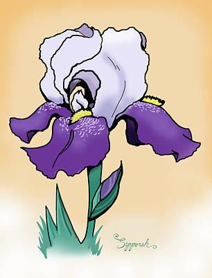 Sunset Iris Poster