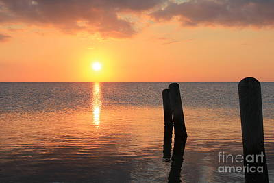 Poster featuring the photograph Sunset On Pimlico Sound by Laurinda Bowling