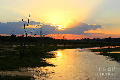 Sunset Over Lake Fork Poster by Kathy  White