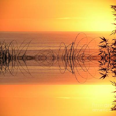 Sunset Reflection Poster by Sheila Ping