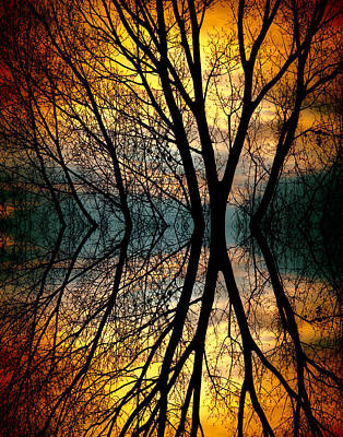 Sunset Tree Silhouette Abstract 3 Poster