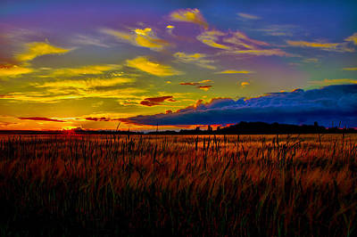 Poster featuring the photograph Sunset Wheat by Gary Smith