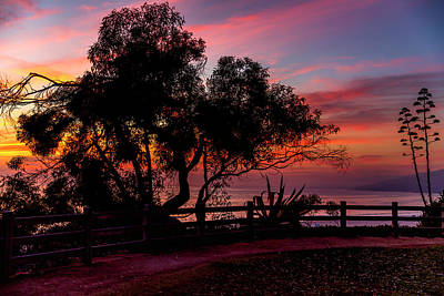 Sunset Silhouettes From Palisades Park Poster