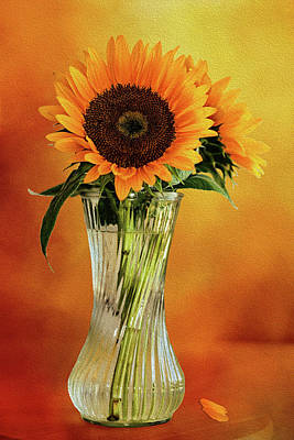Sunshine In A Vase Poster by Diane Schuster