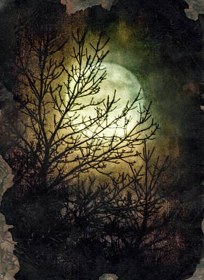Supermoon At Retzer Nature Center- Wisconsin Poster by Jennifer Rondinelli Reilly - Fine Art Photography