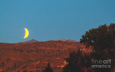 Supermoon Eclipse Over The Foothills Poster by Robert Bales