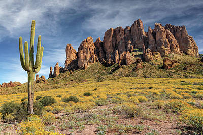 Poster featuring the photograph Superstition Mountains Saguaro by James Eddy