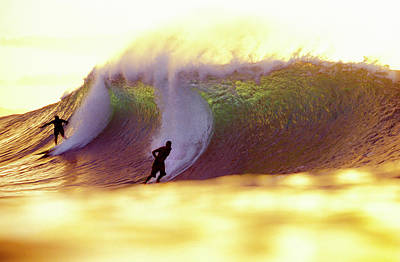 Gold Pipe Surfers Poster