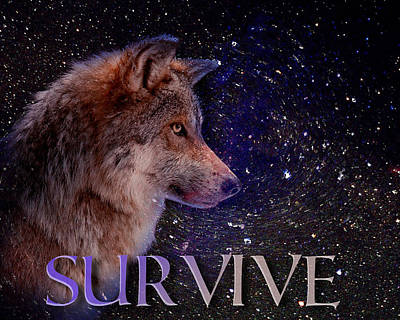 Survive In Universe Poster