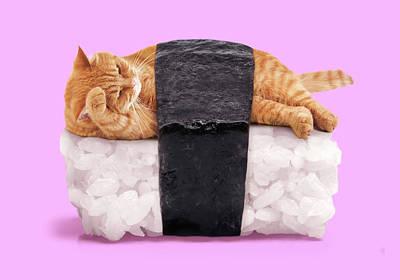 Sushi Cat Poster