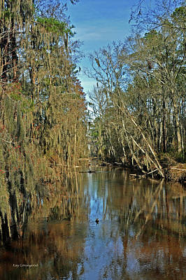 Swampy Creek Poster