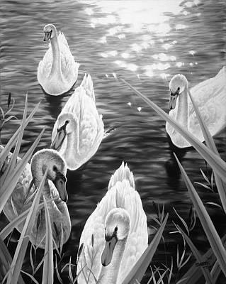 Swan 2 Poster