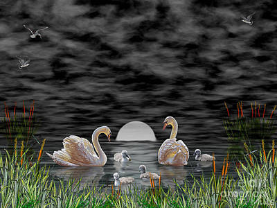 Poster featuring the digital art Swan Family by Terri Mills