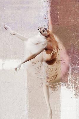 Swan Lake Dance  Poster by Gull G