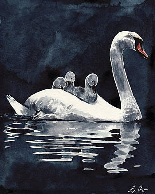 Swan Mother And Babies On The Lake Poster