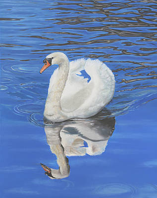 Poster featuring the painting Swan Reflection by Elizabeth Lock