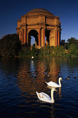 Swans And Palace Of Fine Arts Poster by Panoramic Images