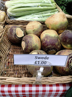 Swede Crop For Sale Poster