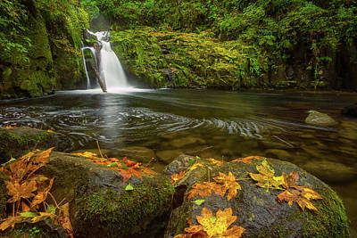 Poster featuring the photograph Sweet Creek Falls In Autumn by Patricia Davidson