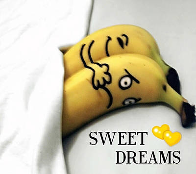 Sweet Dreams Poster by Sheila Mcdonald