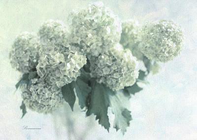 Sweet Memories Poster by Georgiana Romanovna