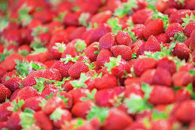 Sweet Strawberries Poster by Todd Klassy