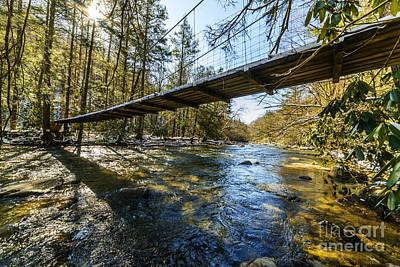 Swinging Bridge Back Fork Of Elk Poster