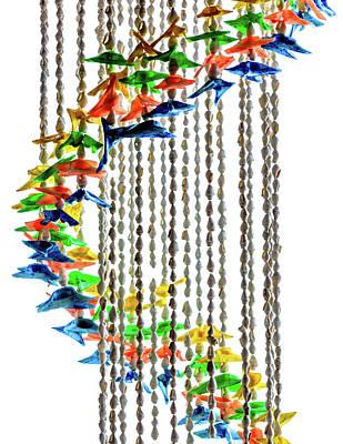 Swirls Of Brightly Colored Seashells Poster by Debra Martz