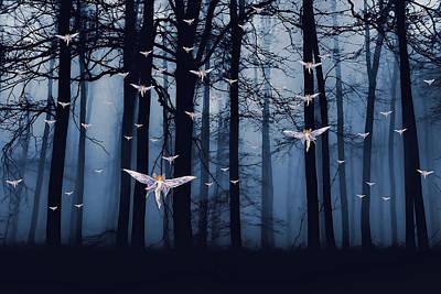 Synchronous Fairies Fly Poster by John Haldane