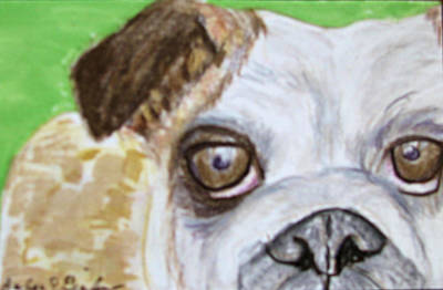 Poster featuring the drawing Take Me Home - Bulldog by Barbara Giordano