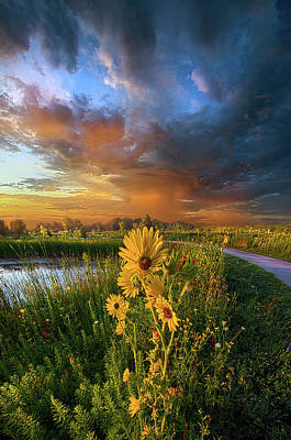 Take My Hand So I Might Reach You Poster by Phil Koch