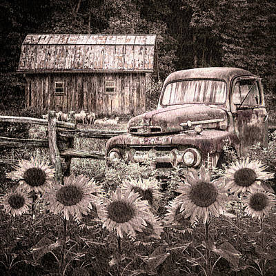 Take Us For A Ride In The Sunflower Patch In Sepia Tones Poster