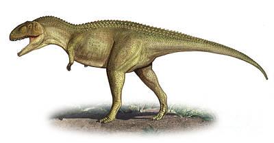 Tarascosaurus Salluvicus, A Prehistoric Poster by Sergey Krasovskiy
