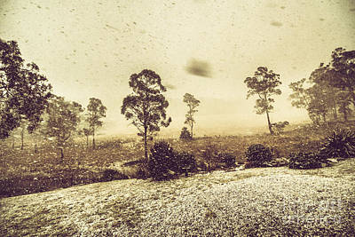 Tasmanian Blizzard Poster