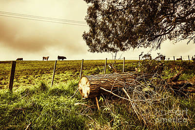 Tasmanian Country Farm Details Poster by Jorgo Photography - Wall Art Gallery