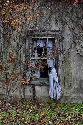Tattered Curtain '09 Fall No.1 Poster by Sari Sauls