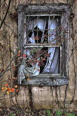 Tattered Curtain Fall '09 No. 4 Poster by Sari Sauls
