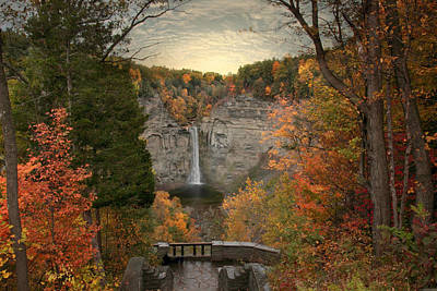 Taughannock Foliage Poster by Jessica Jenney