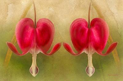 Teardrops Of The Heart Poster by Georgiana Romanovna