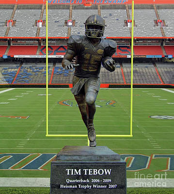 Tebow In The Swamp Poster by D Hackett