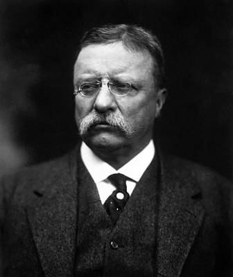 Teddy Roosevelt Poster by War Is Hell Store