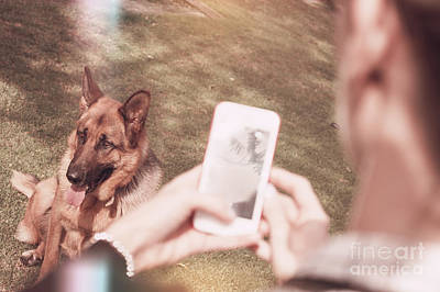 Teen Girl Taking Photo Of Dog With Smartphone Poster