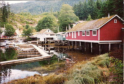 Telegraph Cove 2 Photograph Poster by Kimberly Walker