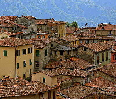 Poster featuring the photograph Terra-cotta Roofs Barga Vecchia Italy by Nicola Fiscarelli