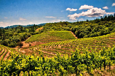 Terraced Vineyards Poster by John K Woodruff