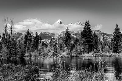 Tetons At Schwabacher's Landing Black And White Poster by TL Mair